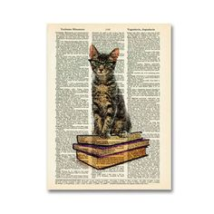 Book Cat now featured on Fab.