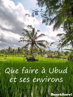 On peut difficilement aller à Bali sans visiter Ubud et ses environs. Coeur battant de l'île, UBud regorge de surprises et d'activités.