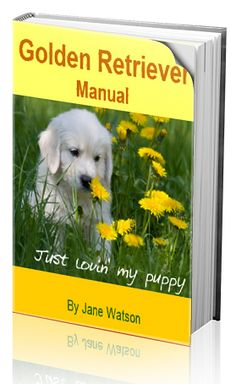 Take good care of your beloved Golden Retriever  I may need this for my future dog!