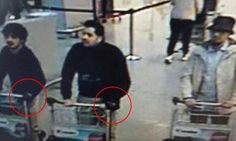 Brussels bombers used explosives packed in their SUITCASES at airport attack | Daily Mail Online