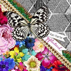 Birthday Butterfly!  #Hallmark #HallmarkNL #MelliMello #kaart