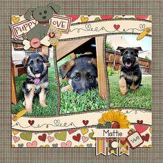 puppy scrapbook page Dog Scrapbook Layouts, Scrapbooking Photo, Album Scrapbook, Scrapbook Templates, Scrapbook Designs, Scrapbook Sketches, Scrapbook Paper Crafts, Scrapbook Examples, Digital Scrapbooking Layouts