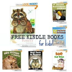 10 Free Kindle Books for Kids: Animals of the Forest, Baby Animals and Moms, 25 Amazon Rainforest Animals, plus more!