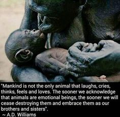 """Who gets to decide which lives matter and which do not? The ONLY body that belongs to you is your own. Question what you've been taught about human domination over all other species and our assumed """"rights"""" over the bodies and lives of nonhuman individuals we objectify/commodify. Challenge your speciesism, learn reverence for life, and live vegan. There's NO good excuse not to! www.vegankit.com, freefromharm.org, www.howtogovegan.org & http://bitesizevegan.com/vegan-library/"""