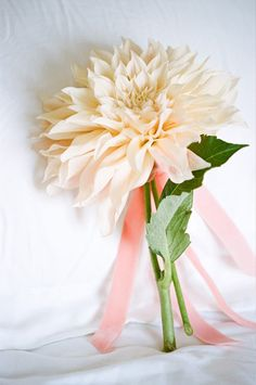 A single oversized dahlia bloom. Love this idea for a bouquet! {Photo by Erin Hearts Court via Project Wedding}
