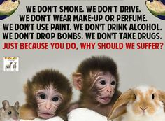 Animals are not ours to experiment on....