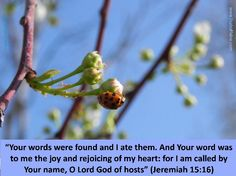 Heavenly Father I love Your words, for they delight and joyfully satisfy my soul!