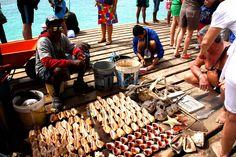 Guy selling seashels at Santa Maria harbour, Sal, Cape Verde.