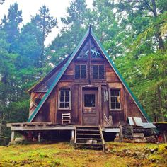 Forest home. photo by daughter of the sun / The Green Life <3