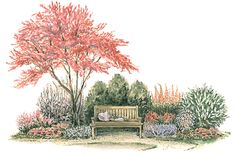 Garden Plans for Shady Spots - Woodland Garden. A handful of hostas, impatiens, and red-twig dogwood combine to create a natural-feeling planting with four-season interest. Garden size: 6 by 12 feet. Garden Nook, Cottage Garden Plants, Garden Shrubs, Shade Garden, Herb Garden, House Plants, Landscape Plans, Landscape Design, Garden Design