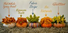 Miniature Pumpkin Vases.  Love the use of Epsom Salts!  Another use for our Voyageur Therapeutic Epsom Salts!  I see a fall decorating project for our storefront in the near future!