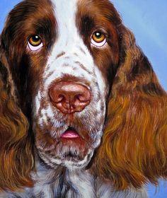 English Springer Spaniel / Dog Original Oil Painting by schildsart