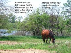 Horse Posters with Sayings | Horse poster 46 | Quotes