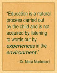 learning through experiences in nature / outdoor classroom / village montessori Preschool Quotes, Teaching Quotes, Education Quotes, Montessori Education, Montessori Classroom, Primary Education, Baby Education, Jean Piaget, Reggio Emilia