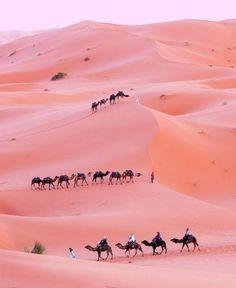 Wij geven u de mogelijkheid de verschillende kleuren van de Afrikaanse woestijnen te ontdekken zoals deze roze woestijn in Tunesie, uiteraard onder proffesionele en ervaren begeleiding