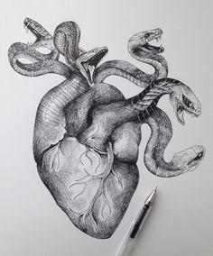 Heart sketch by Alfred Basha Cool Art Drawings, Art Drawings Sketches, Tattoo Drawings, Snake Drawing, Snake Art, Snake Sketch, Pen Sketch, Rosen Tattoo Schwarz, Alfred Basha