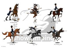 Dressage ~ love the 'eye' on these horses ;)