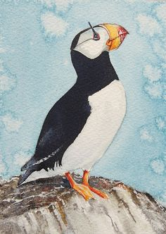 Puffin. A6 original watercolour. Bird illustration.