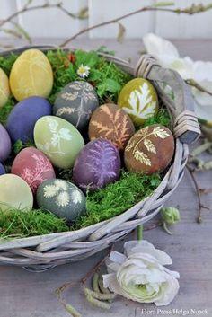 Mit Naturfarben gefärbte Ostereier mit Blattmuster auf Moos in Korb