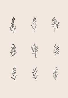 by Ryn Frank .uk Illustration by Ryn Frank .uk Illustration by Ryn Frank . Floral Tattoo Design, Flower Tattoo Designs, Flower Tattoos, Leaf Tattoos, Mini Tattoos, Cute Tattoos, Small Tattoos, Tatoos, Small Tattoo Quotes