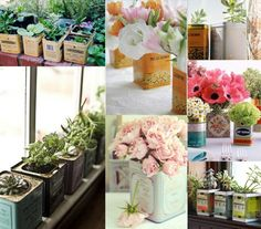 Vintage tins as planters