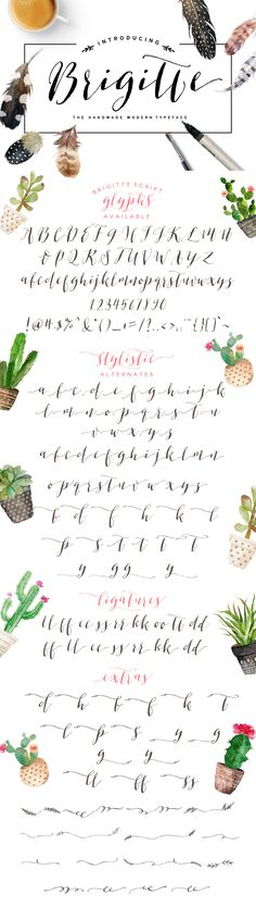 Brigitte Script ~ Script Fonts on Creative Market