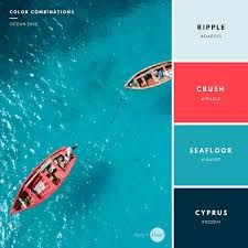 Image result for most inviting color palettes