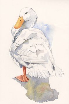 Lucky Duck...watercolor