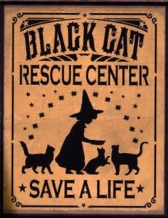 """For your consideration is this unique NEW handpainted Primitive Witch Sign """"""""Black Cat Rescue Center.save a life"""". I started with a specially cut Halloween Witch Decorations, Halloween Signs, Halloween Cat, Vintage Halloween, Halloween Witches, Happy Halloween, Preschool Halloween, Whimsical Halloween, Fall Decorations"""