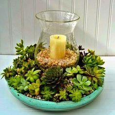 Aramıza yeni katıldı :) #terrarium #plantdesing #flowers #succulent #plant #candle #çiçek #tasarım