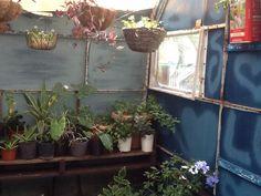 Caravan greenhouse