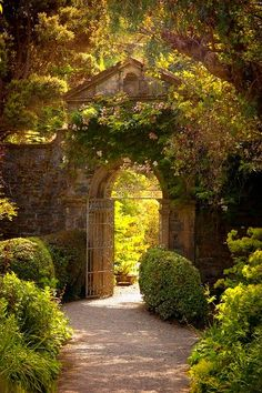 Irish garden gateway to the secret garden at the back of the house obviously.what a wonderful thing The Secret Garden, Secret Gardens, Hidden Garden, Parks, Exterior, Garden Gates, Garden Entrance, Garden Doors, House Entrance