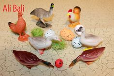 Animals Toys Collection for Children Toys Review
