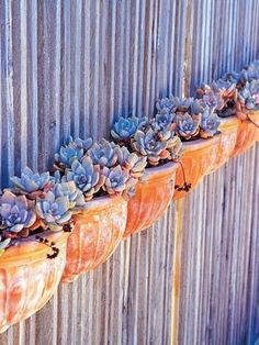 Image result for corrugated metal roof karoo