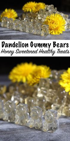 Dandelion and Honey Gummy Bears Recipe ~ This wild foraged gummy bears recipe wi.Thanks whitchywoman for this post.Dandelion and Honey Gummy Bears Recipe ~ This wild foraged gummy bears recipe will get your little ones excited. Candy Recipes, Real Food Recipes, Cooking Recipes, Healthy Recipes, Gelatin Recipes, Wine Recipes, Dandelion Recipes, Flower Food, Wild Edibles