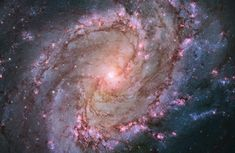 """Hubble image of the barred spiral galaxy M83, the """"Southern Pinwheel,"""" which lies 15 million light-years away in the constellation Hydra. This mosaic image was released in January."""