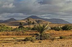 Fuerteventura Canario, Canary Islands, Vineyard, Vacation, Places, Outdoor, Home, Beautiful Places, Europe