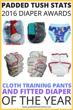 The nominees for the best reusable cloth training pants in the 2016 Padded Tush Stats Diaper Awards were the Flip Potty Trainer, GroVia My Choice Trainer, and Blueberry Trainer. The nominees for best fitted diaper were the Sloomb/Sustainablebabyish Overnight Bamboo Fleece Fitted (OBF), Sloomb/Sustainablebabyish Snapless Multi Fitted, and Cloth-eez (GMD) Workhorse Fitted. See who won for each category if you need ideas for which product to purchase next!