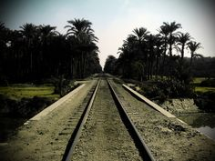 Cairo railways Cairo, Railroad Tracks, Egypt, Photo Galleries, Gallery, Hand Warmers