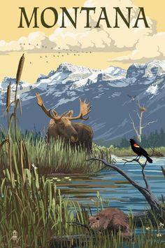 Glacier National Park, Montana - Mountain and Marsh Scene (Art Prints, Wood & Metal Signs, Canvas, T Pin Ups Vintage, Big Sky Montana, Free Canvas, Poster Prints, Art Prints, Usa Tumblr, Stock Art, Parcs, Road Trip Usa