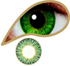 Forest Green Contact Lenses