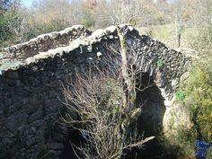 canencia puente cadenas 3.jpg a ruta de los puentes medievales de Canencia de la Sierra, en la sierra norte madrileña, formada por Puente Canto, Puente de las Cadenas, Puente de Matafrailes.