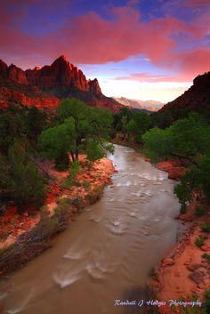 Sunset and the Watchman With the Virgin River in Zion National P by Randall J  Hodges on 500px )