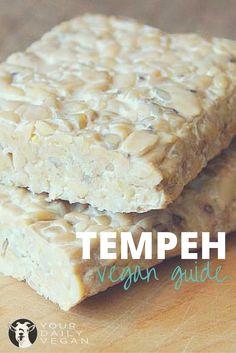 tempeh guide
