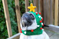 "Dog Hat - ""Oh Christmas Tree"""