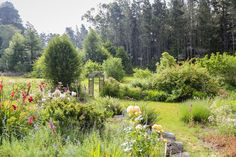 House in Mendocino, United States. An idyllic location that is just up the hill from the town of Mendocino. Far enough away for quiet and privacy, close enough to get to any of the activities that interest you. A beautiful garden setting for one or two people who want to recharge. ...