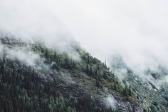 "Travel Feels ""Hill Station Edition misty peaks - i"" . #nature_brilliance#EarthVisuals#artofvisuals#welivetoexplore#natureaddict#naturediversity#ourplanetdaily#earth_deluxe#instanaturelover#nature_prefection#allnatureshots#unlimitedplanet#getoutside#getoutstayout#exploremore#theglobewanderer#letsgosomewhere#campvibes#optoutside#earthfocus#rei1440project#liveoutdoors#travelstoke#canonphotos#canoneos#canonrebel#canonphotographer#canonphotography"