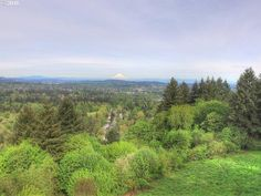 Amazing Views on over 5 Acres in West Linn! A stunning location for you to build your dream home or invest and develop and sub-divide into multiple home-sites! Beautiful, private and quiet with easy access to HWY 43 and only minutes to Lake Oswego, Portland City Center and award winning West Linn Schools!