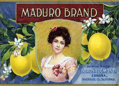 Maduro Brand advs