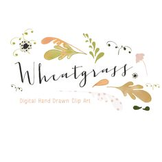 Hand drawn leaves and florals digital clip art - Wheatgrass         March 25, 2014 at 05:33AM